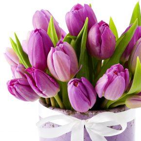 В канун 8 марта или нужды нашего цветника